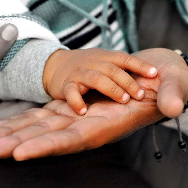 Parent and childs hands